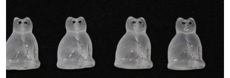 CAT 19/13mm Ice cat YET EYE
